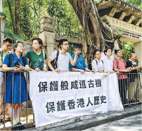 為樹木發聲——趙紹惠常為樹木發聲,去年出席研討會,討論颱風下的樹木管理措施,如安裝樹木傳感器。(受訪者提供)