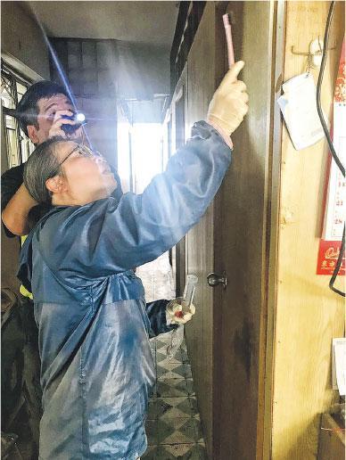 滅虱專家——趙紹惠去年參與牀虱研究,到劏房及板間房檢查虱患、採虱及滅虱。(受訪者提供)