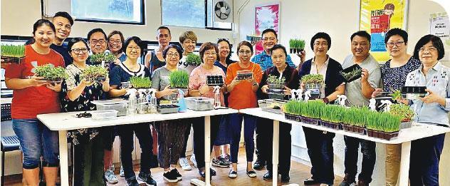 多元工作坊——基金會工作坊非常多元化,圖為參加者學習種植黑豆苗、藜麥苗等芽苗沙律菜的工作坊。(受訪者提供)