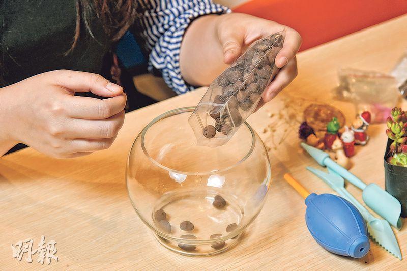 (1) 先在盆底放上通風乾爽的陶粒(發泡煉石),接着倒入適量的多肉植物專用土(黃志東攝)