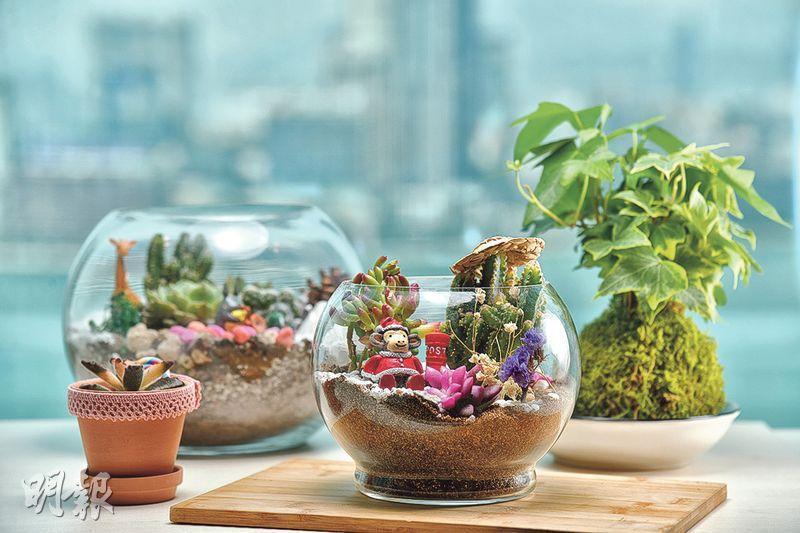 玻璃盆景製作(黃志東攝)