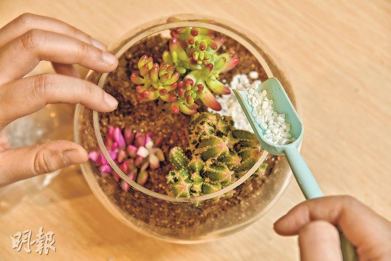 (3) 分數次補泥,鋪上彩色砂粒和石頭壓緊泥土(黃志東攝)