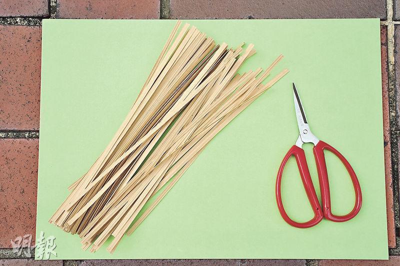 簡單編織工具——Stony手上栩栩如生的昆蟲動物,就是用這一把小剪刀和紙包鐵線製作的。(楊柏賢攝)