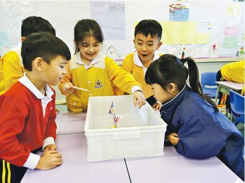 STEM倡每校一教師統籌 檢討小組建議先驅校作分區中心