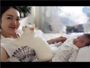 貓咪跟BB分享愛。