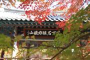 韓國紅葉:全羅北道