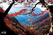 韓國紅葉:全羅南道 長城白羊寺(內藏山國立公園)