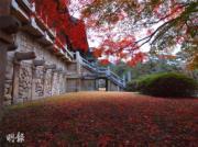 韓國紅葉:慶尚北道 慶州佛國寺