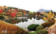 韓國紅葉:忠清南道 大田 Daejeon National Cemetery
