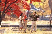 韓國紅葉:首爾昌德宮