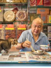 貓咪「眼甘甘」凝視着主人的飯餸。(credit:Marcel Heijnen, 'Hong Kong Shop Cats' # (nr), Hong Kong 2016 Courtesy of Blue Lotus Gallery, Hong Kong)