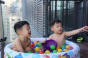 范范和黑人的豪宅外可以設置小泳池讓兩兄弟玩個夠。(左為翔翔、右為飛飛)