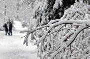 德國南部雪景(法新社)