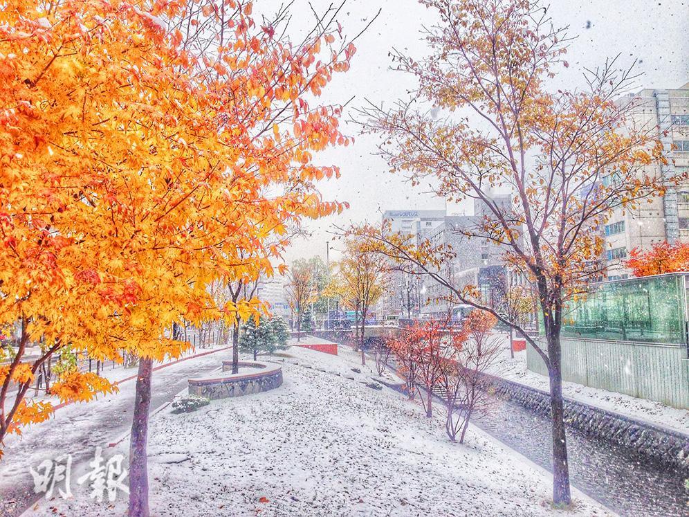 2016美景重溫:北海道紅葉 x 白雪