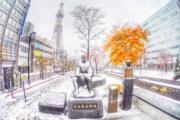 2016年,北海道札幌(讀者Lawrence提供)