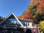 【日本紅葉】高尾山纜車站