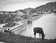 大欖涌水塘1957年竣工,是當時最大型的工程項目。(圖片及資料由香港社會發展回顧項目提供)