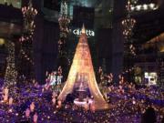 燈光匯演場地中央擺放了魔法玫瑰,表演完結後,遊客可排隊拍照留念。(Janice Hui攝)