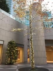 日本東京汐留Caretta的燈飾。(Janice Hui攝)