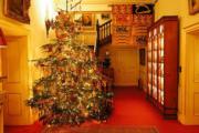 【英國王室】英國王儲查理斯及妻子卡米拉的官邸克拉倫斯宮(Clarence House)已佈置了聖誕樹。(Clarence House Twitter圖片)