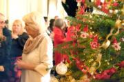 【英國王室】英國王儲查理斯的妻子卡米拉(Clarence House Twitter圖片)
