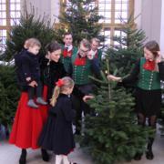 【瑞典王室】2017年12月14日,瑞典王室發布新相,女王儲維多利亞公主按照傳統接收瑞典農業科學大學送來的多棵聖誕樹。維多利亞公主的一對子女(5歲的愛絲黛小公主、1歲多的奧斯卡小王子)亦有一同露面。(kungahuset instagram圖片)