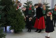 【瑞典王室】瑞典女王儲維多利亞公主偕一對子女接收聖誕樹。(Kungahuset.se)