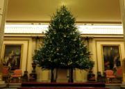 【英國王室】英國白金漢宮佈置了聖誕樹。(The Royal Family facebook圖片)
