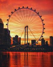新加坡Singapore Flyer摩天輪(Singapore Flyer facebook圖片)