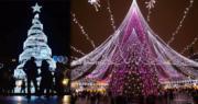 世界各地有不同特色的聖誕樹,色彩繽紛迎聖誕!(法新社)