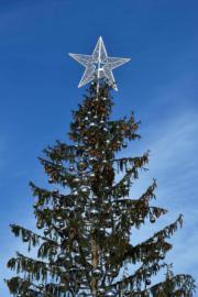 【世界各地聖誕樹】意大利Piazza Venezia(法新社)