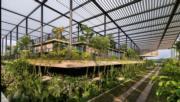 馬來西亞檳城Factory In The Forest(RIBA網站截圖)