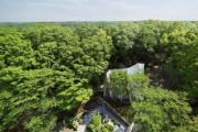 日本埼玉縣Sayama Forest Chapel(RIBA網站截圖)