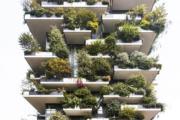 意大利米蘭Vertical Forest(RIBA網站截圖)