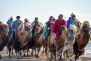 【錫林浩特冬季那達慕】當地牧騎演員騎着駱駝進入會場。 (新華社)
