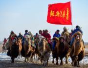 【錫林浩特冬季那達慕】當地牧騎演員騎駱駝進入會場。(新華社)