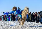 【錫林浩特冬季那達慕】當地牧民表演馬上拾哈達。(新華社)