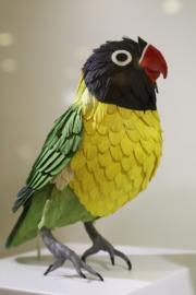 【鳥語花香──紙雕藝術展】黃領情侶鸚鵡(何芍盈攝)