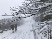 台北市大屯山降雪,銀裝素裹。(中央社)