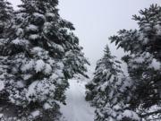 雪山降雪(中央社)