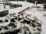 合歡山雪景(中央社)