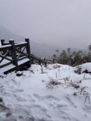 雪山積雪(中央社)
