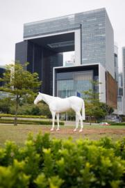 【藝遊維港—中西區海濱長廊】Mark Wallinger作品《White Horse》(2013)