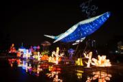 福州元宵燈會熱鬧非凡,溫泉公園展區近40米長燈組《海底世界》矚目。(中新社)