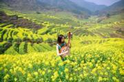 3月9日,一名女子在江西婺源篁嶺古村油菜花海中演奏。(中新社)