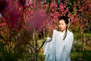 3月10日,廣西南寧市青秀山風景區內,桃花連片綻放。(中新社)