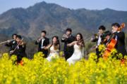 3月12日,一支青年交響樂團在湖南平江石牛寨的油菜花地中進行演奏。(中新社)