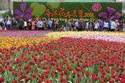 3月16日,2018年香港花展開幕,市民在參觀拍攝。 (新華社)