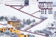 雪後拉薩──遊客參觀布達拉宮。(中新社)