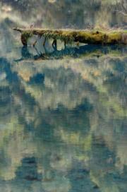 九寨溝景點──鱷魚嘴(2004年新華社資料圖片)